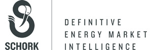 The Schork Group Logo