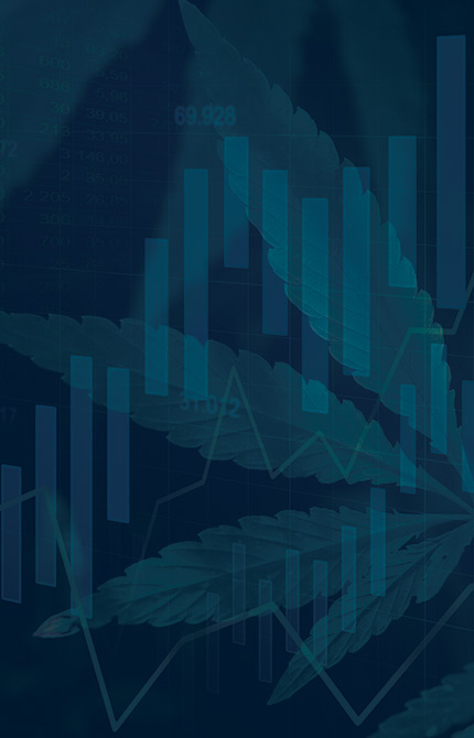 The Cannabis Investing Virtual Expo