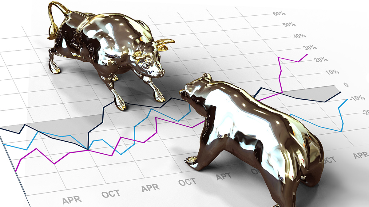options trading, bull and bear